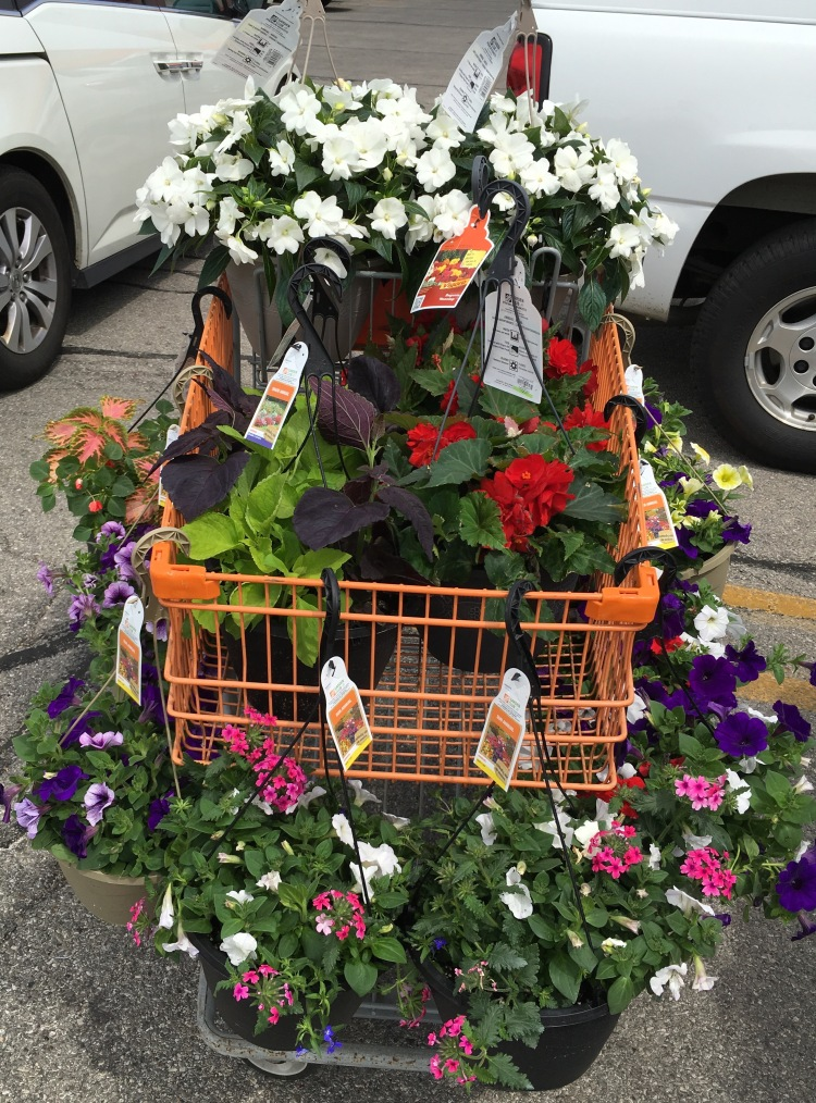 Flowers in cart