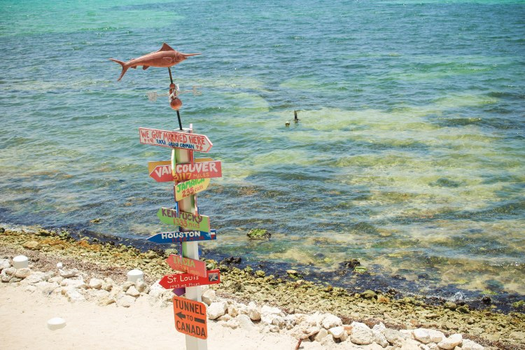 2016 Grand Cayman-188