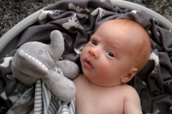 Becci Hethcoat Photography-Wheaton-Illinois-Newborn-Twins-35