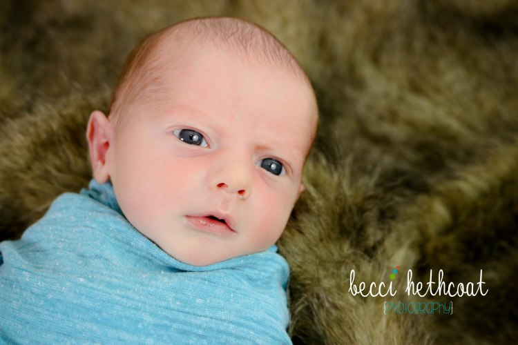 BecciHethcoatPhotography-Newborn Photographer-Wheaton-19