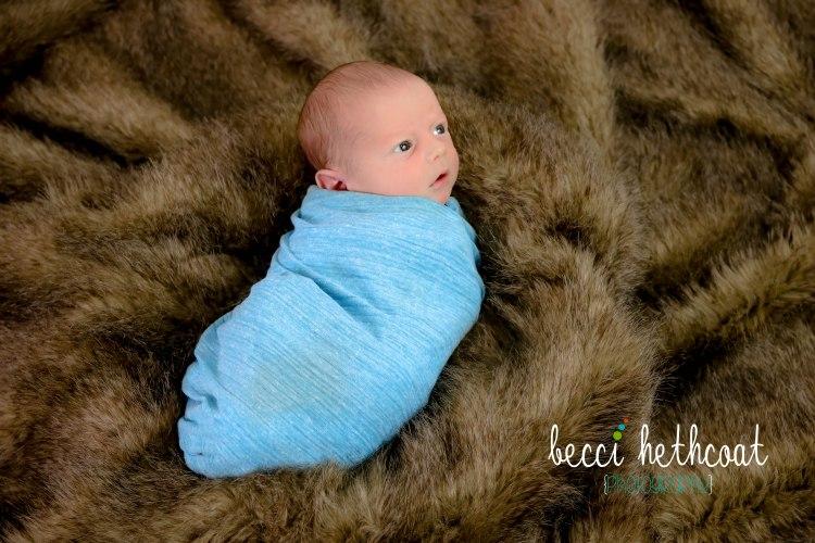BecciHethcoatPhotography-Newborn Photographer-Wheaton-20