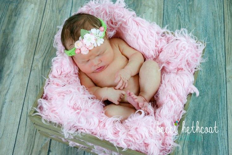 BecciHethcoatPhotography-Newborn Photographer-Wheaton-5