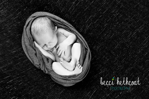 BecciHethcoatPhotography-Newborn Photographer-Wheaton-50