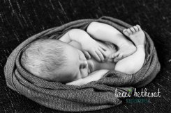BecciHethcoatPhotography-Newborn Photographer-Wheaton-51