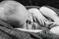 BecciHethcoatPhotography-Newborn Photographer-Wheaton-52