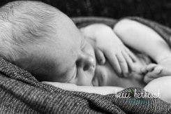 BecciHethcoatPhotography-Newborn Photographer-Wheaton-52