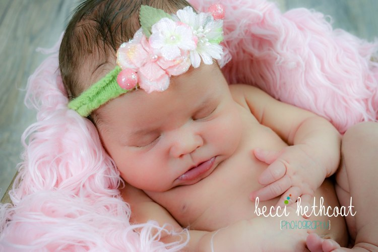 BecciHethcoatPhotography-Newborn Photographer-Wheaton-6