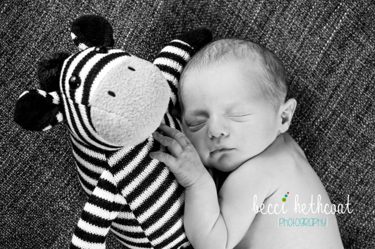 BecciHethcoatPhotography-Newborn Photographer-Wheaton-63