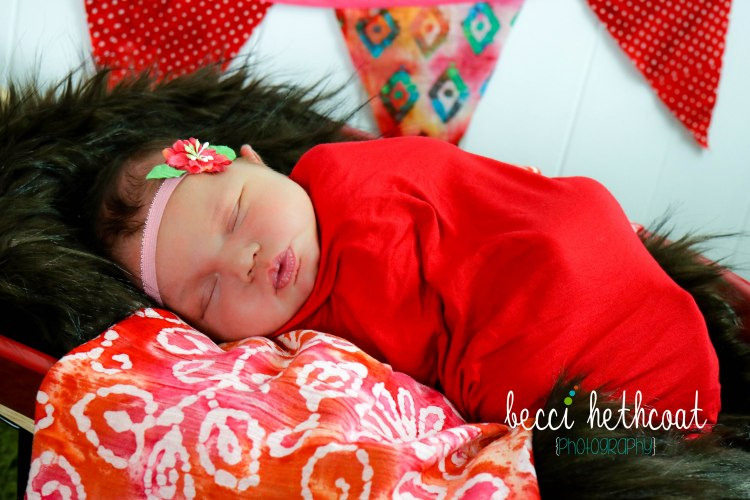 BecciHethcoatPhotography-Newborn Photographer-Wheaton